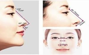 分清鼻尖类型